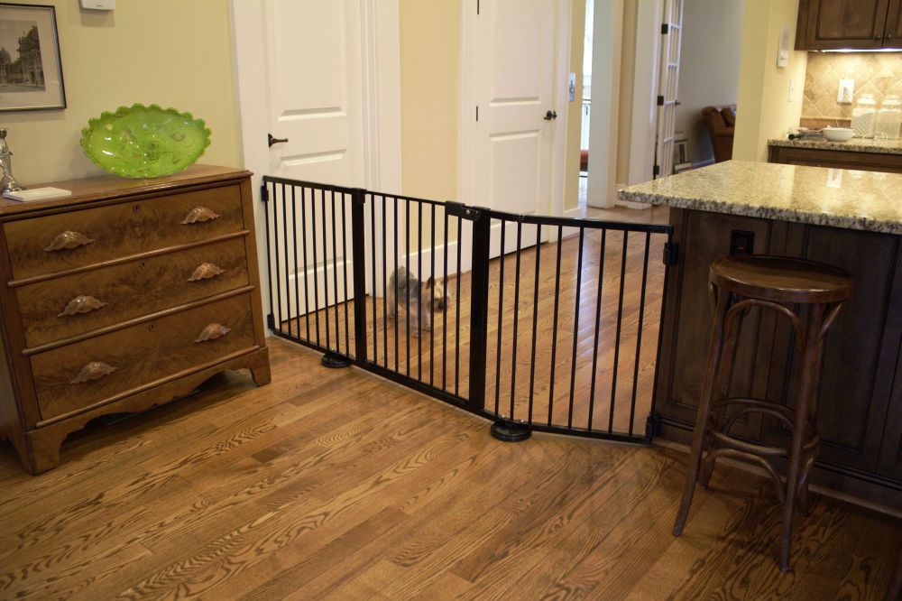 Versagate Baby Gate Black-VG65-with-Dog-1000