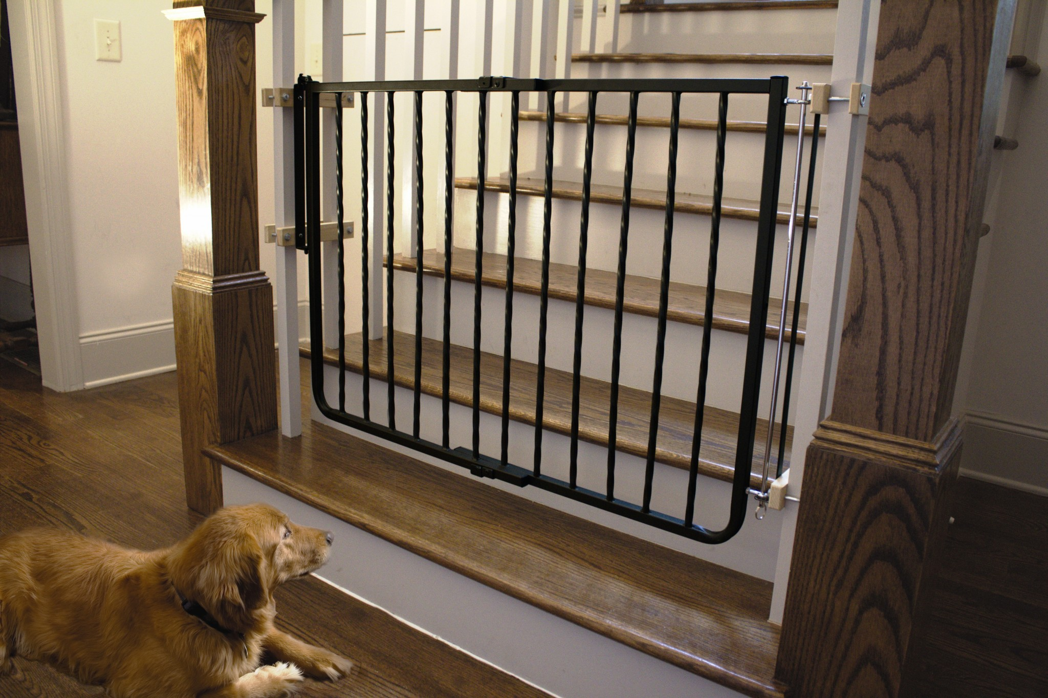 Wrought Iron Decor Gate WI-30 Black